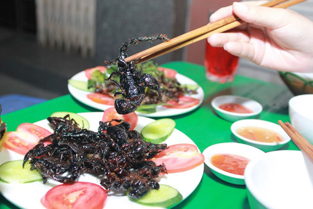scorpion-in-bay-nui-area-an-giang Specialty Foods in An Giang