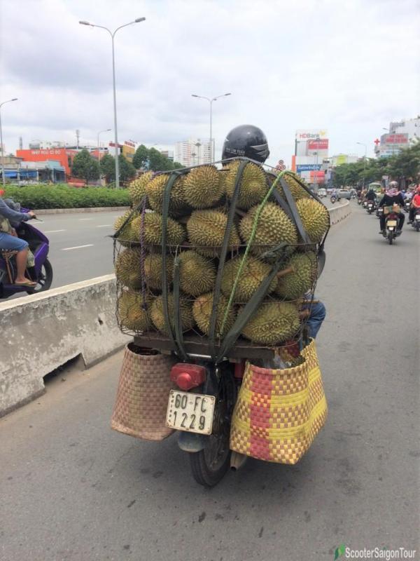 Durian On Motorbike In