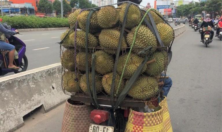 mekong delta fruit durian