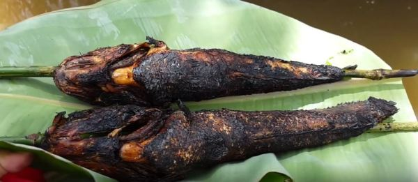 Grilled Snakehead Wrapped In Young Lotus Leaves 1