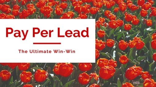 how to sell Pay Per Lead SEO