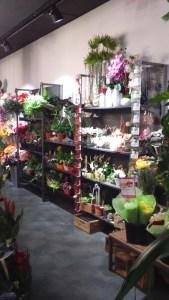 agencement de boutiques de fleurs