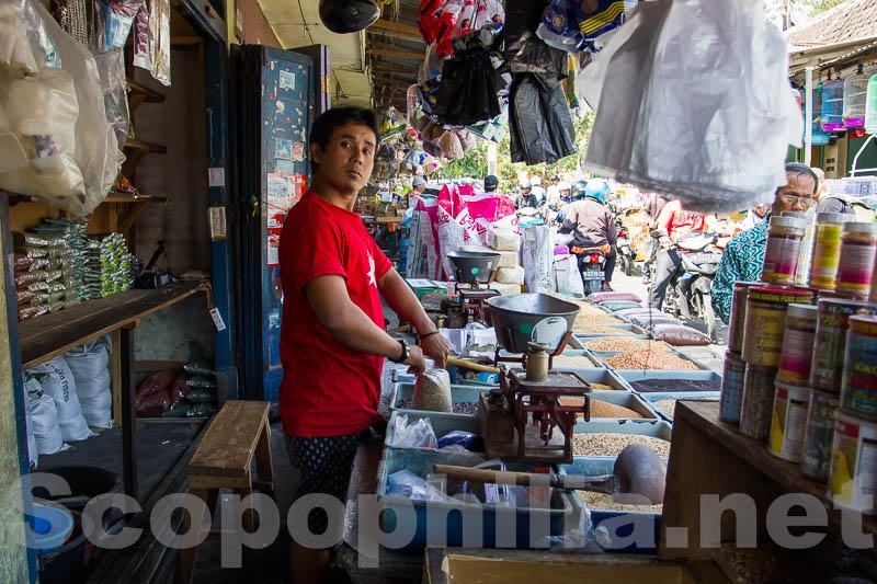 Pasar Burung Malang-9007