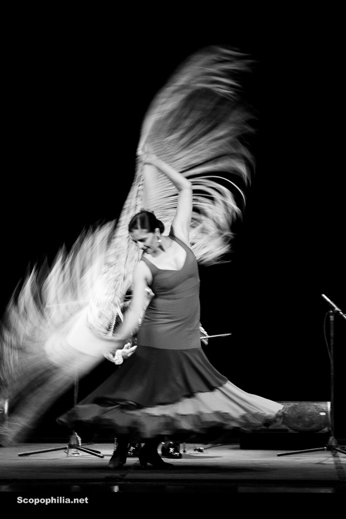 Chekara So close so far - Flamenco-7058