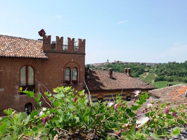 Cosa vedere tra Langhe e Monferrato