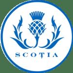 scotlandbuttonT