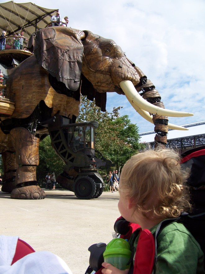 Mr Toddler in awe at Nante's Mechanical Elephant