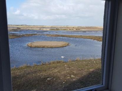 Views of the Loch