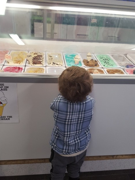 Views of the ice-cream in Partridges