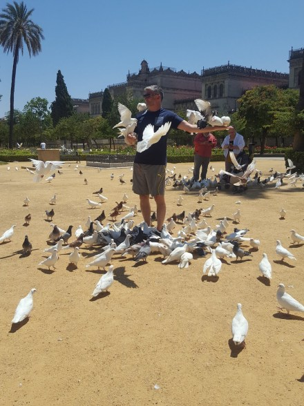 Feeding the birds at Maria Luisa Park