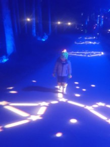 Tips for The Enchanted Forest Pitlochry