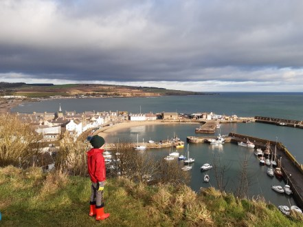 Views of Stonehaven Harbour