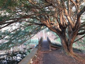 Aberdeenshire Castle Trail with Kids