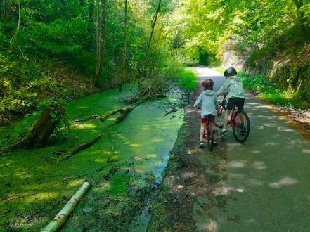 Cycling the Deeside Way