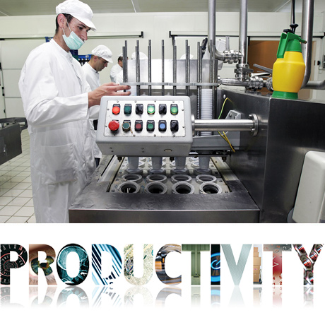 Productivity issues in process industry