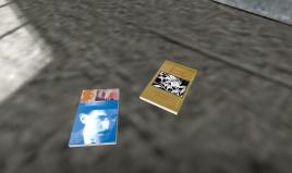 Henry's Memory: poetry books on the floor, Pesoa and Araki Yasusada