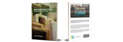 nature-centric design and natural infrastructure
