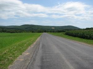Walking east on Purvis Rd between fields