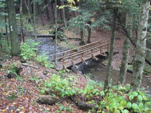 Foot bridge over small stream between Mariposa Rd (CR 13) and Bamberry Rd