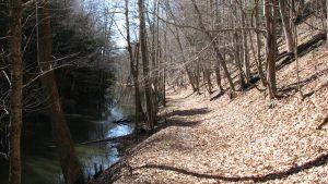 Cayuta Creek trail