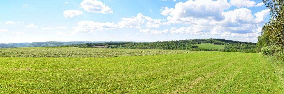 View from field near Turnpike Road