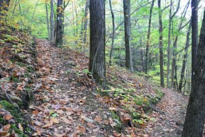 Switchbacks on the way down East Hill, trail heading west