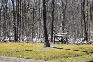 Big chair across from FLT trailhead on Fox Hill Rd