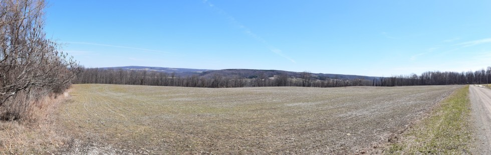 Panorama looking across a field on Grey Rd, trail heading east