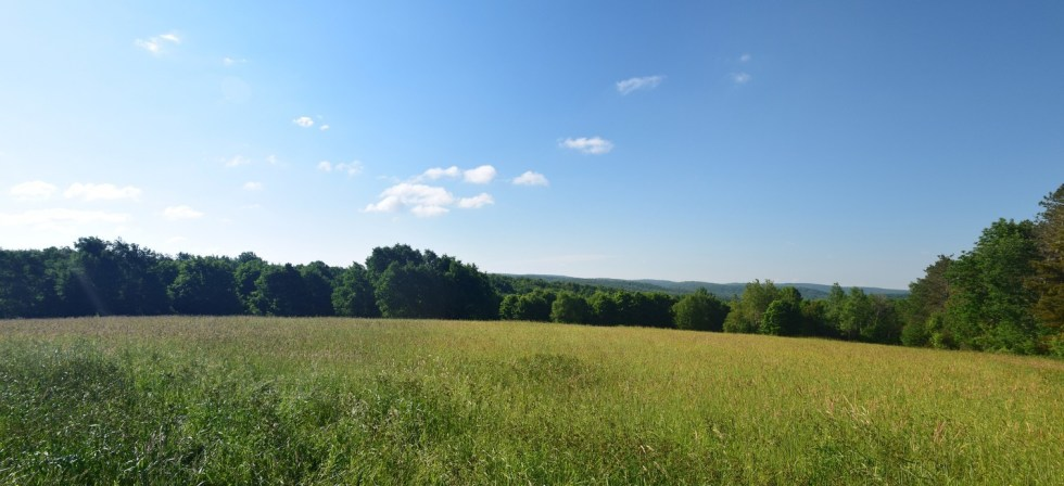 Looking across a field on top of a hill east of Brennan Rd