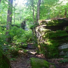 Trail winding through boulders in Little Rock City