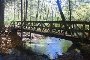 Foot bridge over Wolf Run