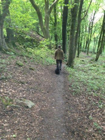 Walking a woody trail