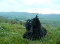 10 Scottish Mountain Top