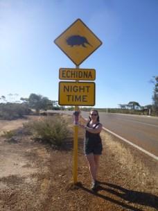 An echidna sign!!