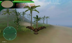 fly-like-a-bird-3-2