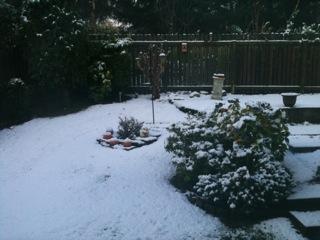 Christmas is coming – Here we gooooooooo snow.