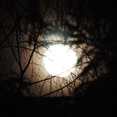 The Big Moon of 19th March 2011