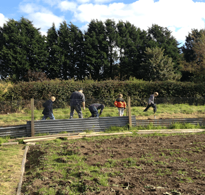 Country Kids & The New Allotment