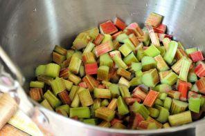 Plot Rhubarb