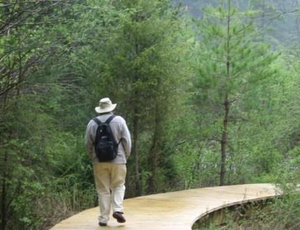 Man walking along boardwalk, translation prize
