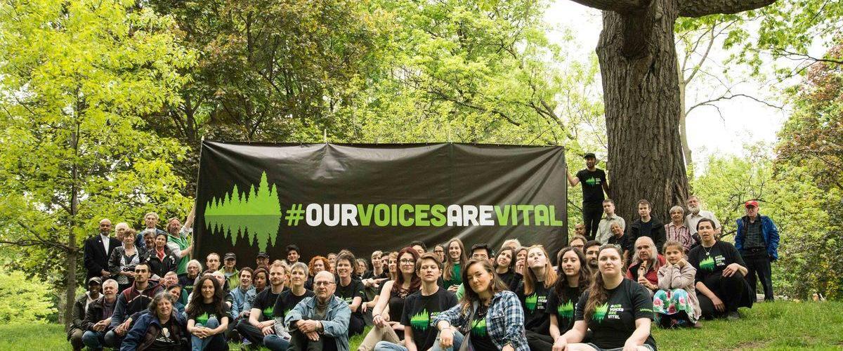 Greenpeace SLAPP