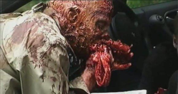 zombiediaries2
