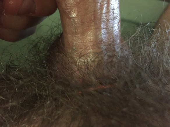 My Hairy Dick