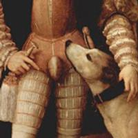Dog Sniffing Codpiece