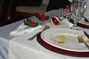 Remnants of Christmas Dinner