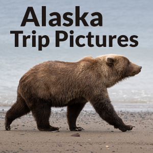 Buy Alaska Travel Photography