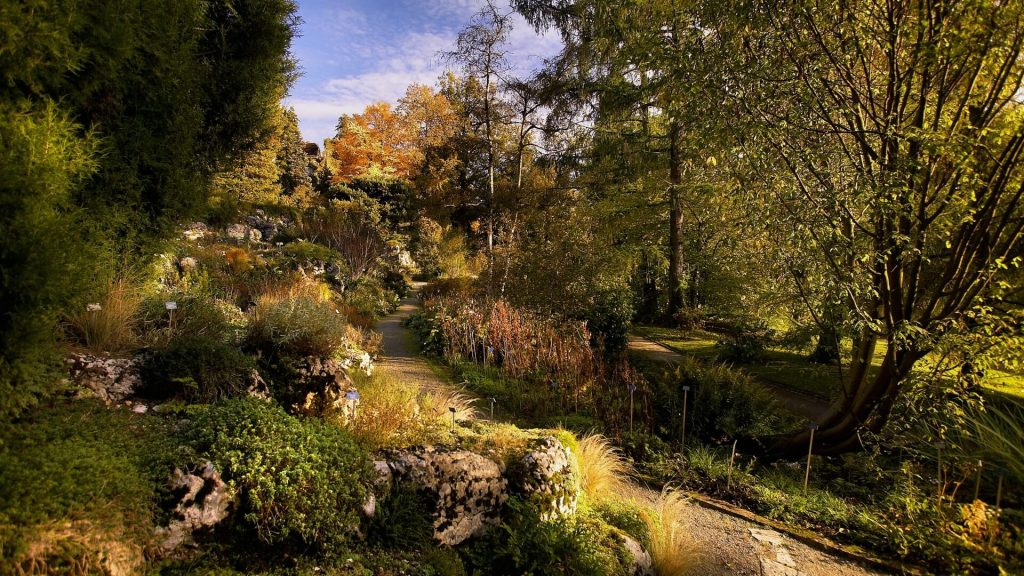 Botanical Garden of the University of Bern - Switzerland
