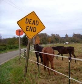 DeadEnd_Horses2