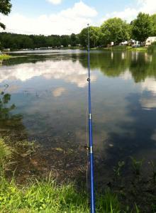 fishing_in_lake