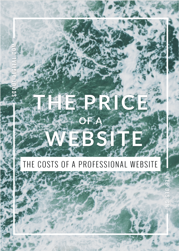 The Cost of a Website